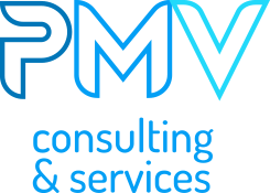 PMV Consulting logo picto